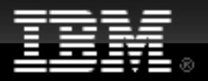 IBM Developer works logo